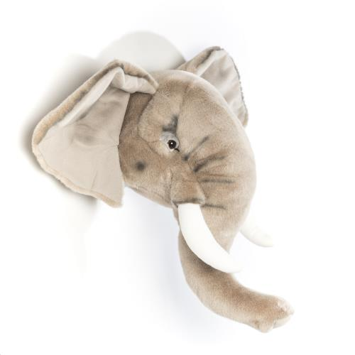 Wild & Soft - Kop Olifant George
