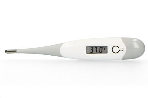 Alecto - Bc-19Gs - Digitale Thermometer Grey