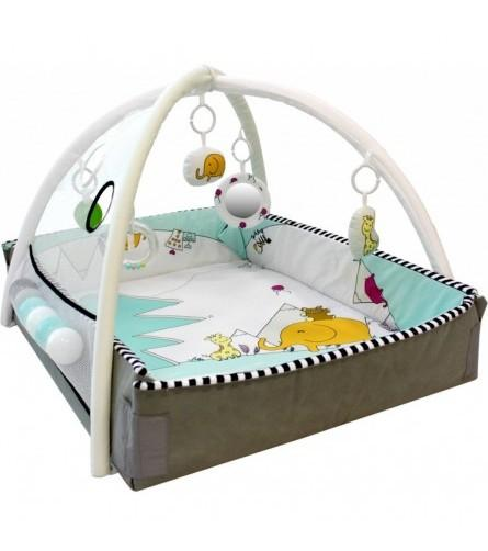 Tryco - 5-In-1 Ball Play Activity Gym - Lovely Park